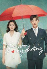 Nonton Film You Are My Destiny Ch (2020) Subtitle Indonesia Streaming Online Download Terbaru di Indonesia-Movie21.Stream