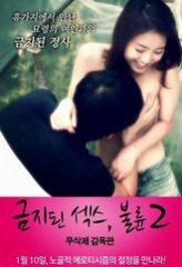Nonton Film Forbidden Sex 2: Affair (2012) Subtitle Indonesia Streaming Online Download Terbaru di Indonesia-Movie21.Stream